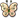 :Precious_Butterfly: