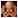 :dora_octopus:
